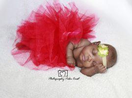 Newborn photographer West Palm Beach Miami Florida